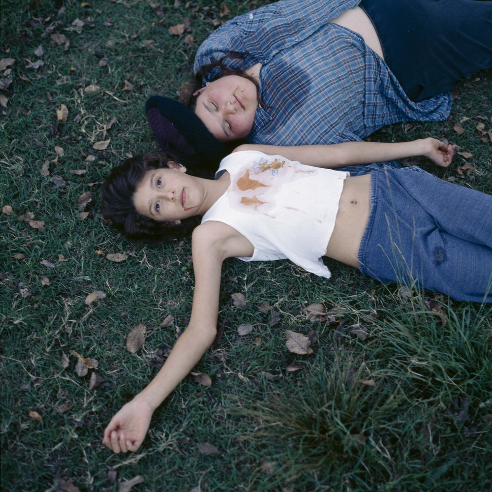 <i>Two disgraces, 2000</i>, The Adventures of Guille and Belinda and The Enigmatic Meaning of Their Dreams I