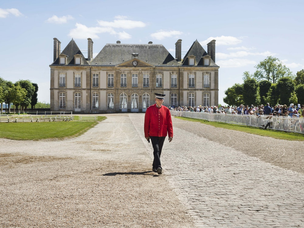 <i>Master of ceremonies, Haras du Pin, Le Pin-au-Haras, Orne, 2016, </i>Gendarme Sur La Colline (2017)