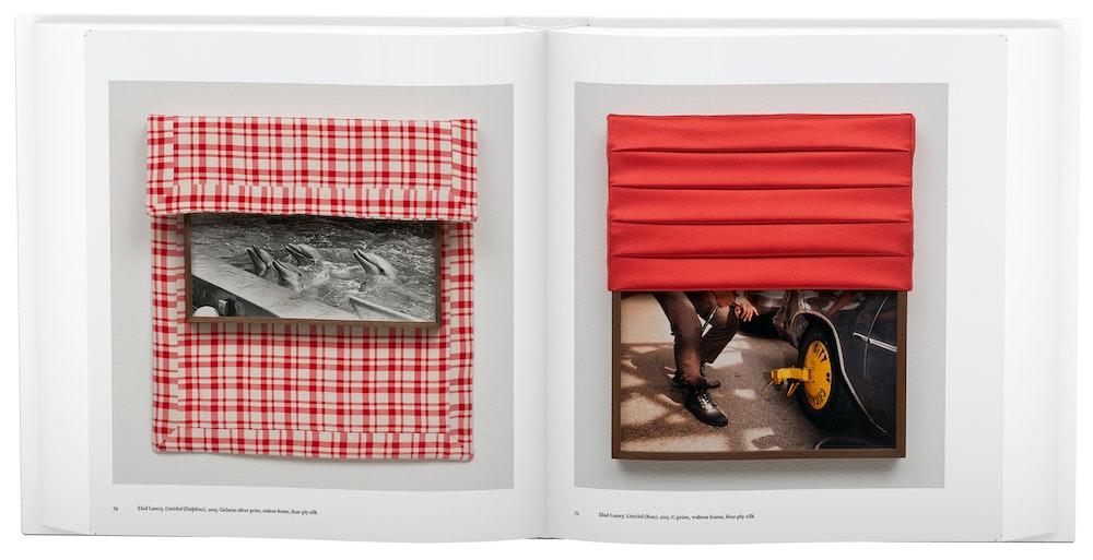 Elad Lassry, <i>Photography Is Magic</i> (2015)