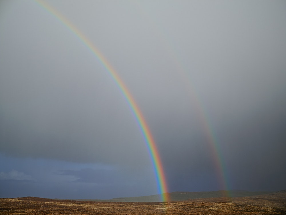 <i>Double Rainbow, Donegal, Ireland, 2013</i>, Does Yellow Run Forever? (2011-14)